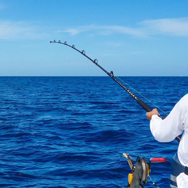 Bey Bodo Charter boats fishing school